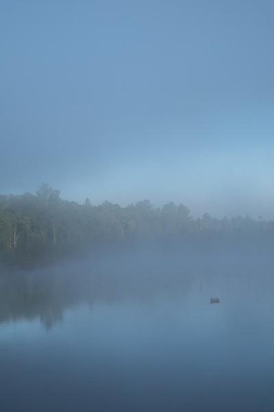 Dawn Watson, %22Lodge Lake Series 3.jpg