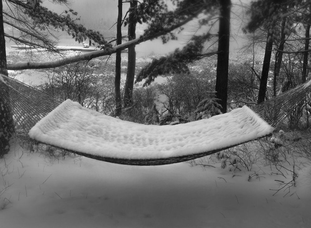 """Woodloch Winter Hammock"" 40 x 20, photo on metal"