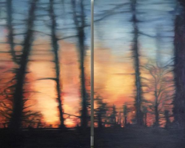 Woodloch Dream diptych 30 x 49, oil on canvas.