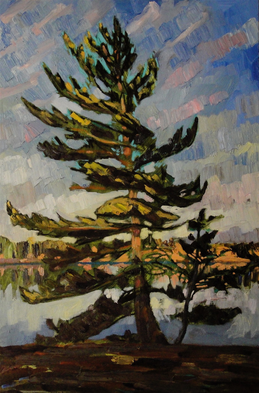 Ann's Young Pine, 36 x 24, oil on canvas