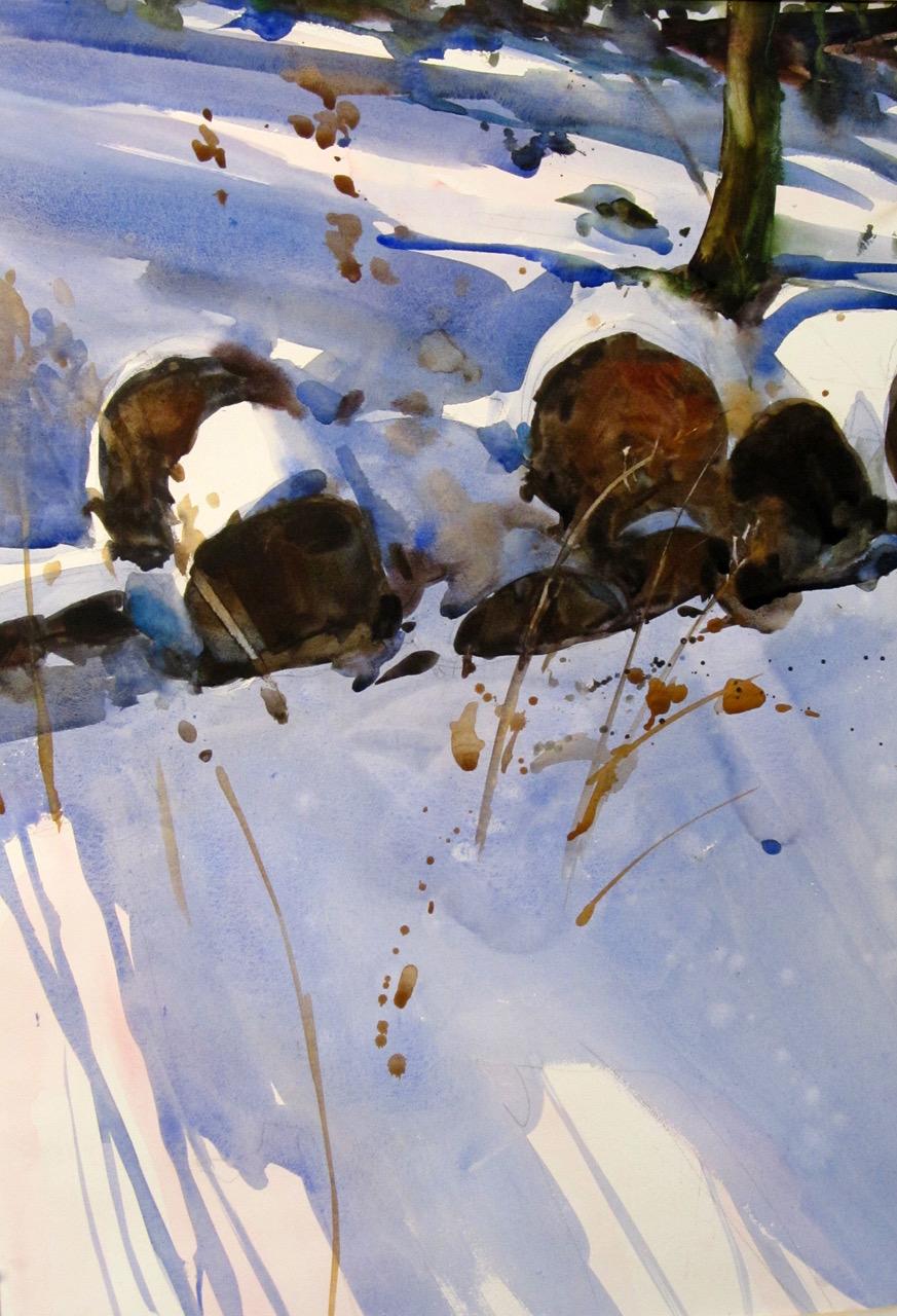 Bill Teitsworth: Goldenrod, 36 x 28, watercolor