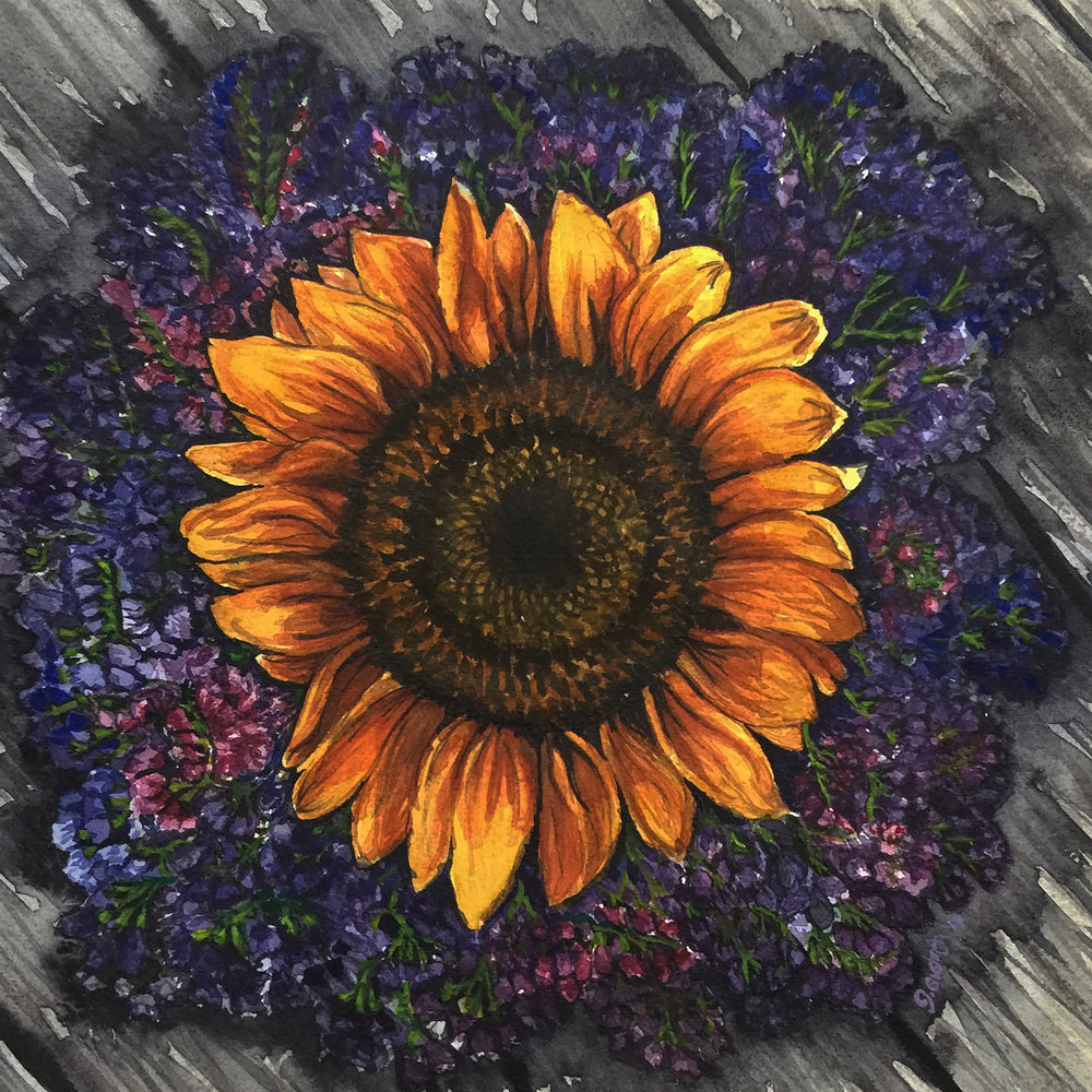 Sunflower on Limonium