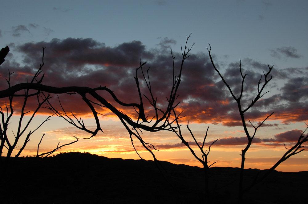 Outback Ochres - 28.jpg