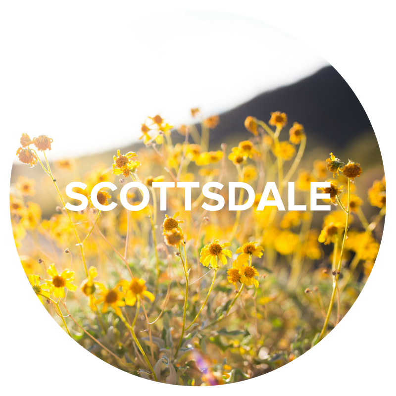 Popular Destinations - SCOTTSDALE.png