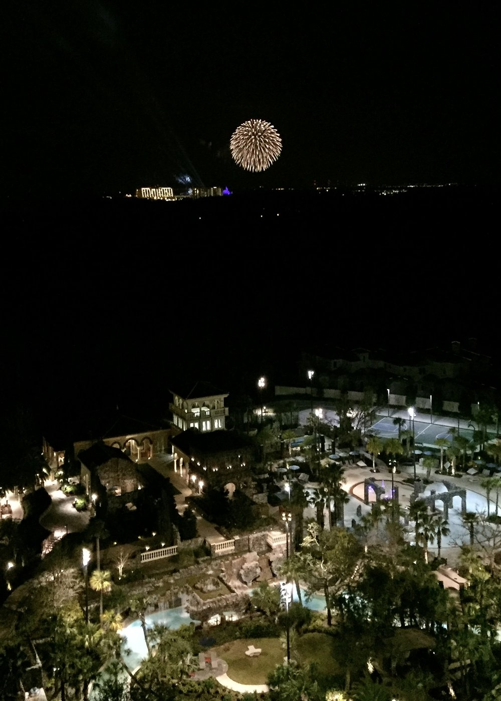 You can see the nightly Magic Kingdom fireworks display from the Park View Rooms and Suites, and the amazing Capa restaurant.