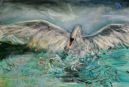 landing-swan.jpg
