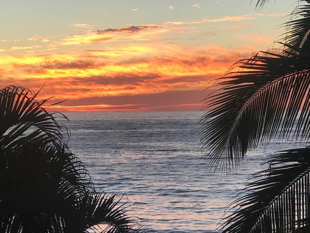 Sunset by Liza.jpg