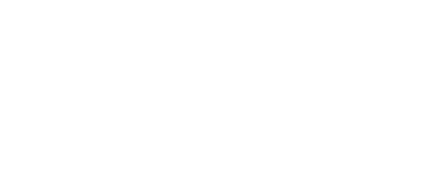 All Inclusive Volunteers