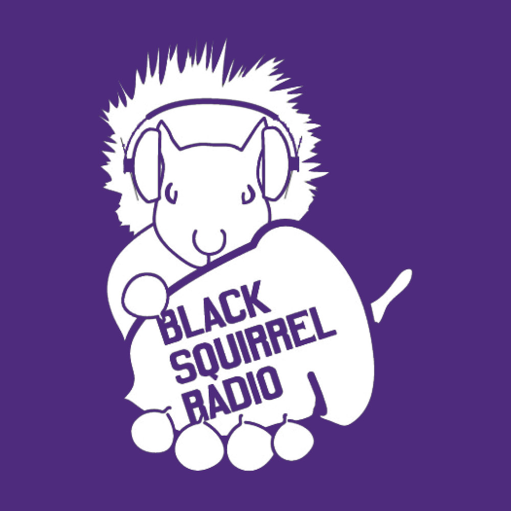 LOGO_Purple_BSR.jpg