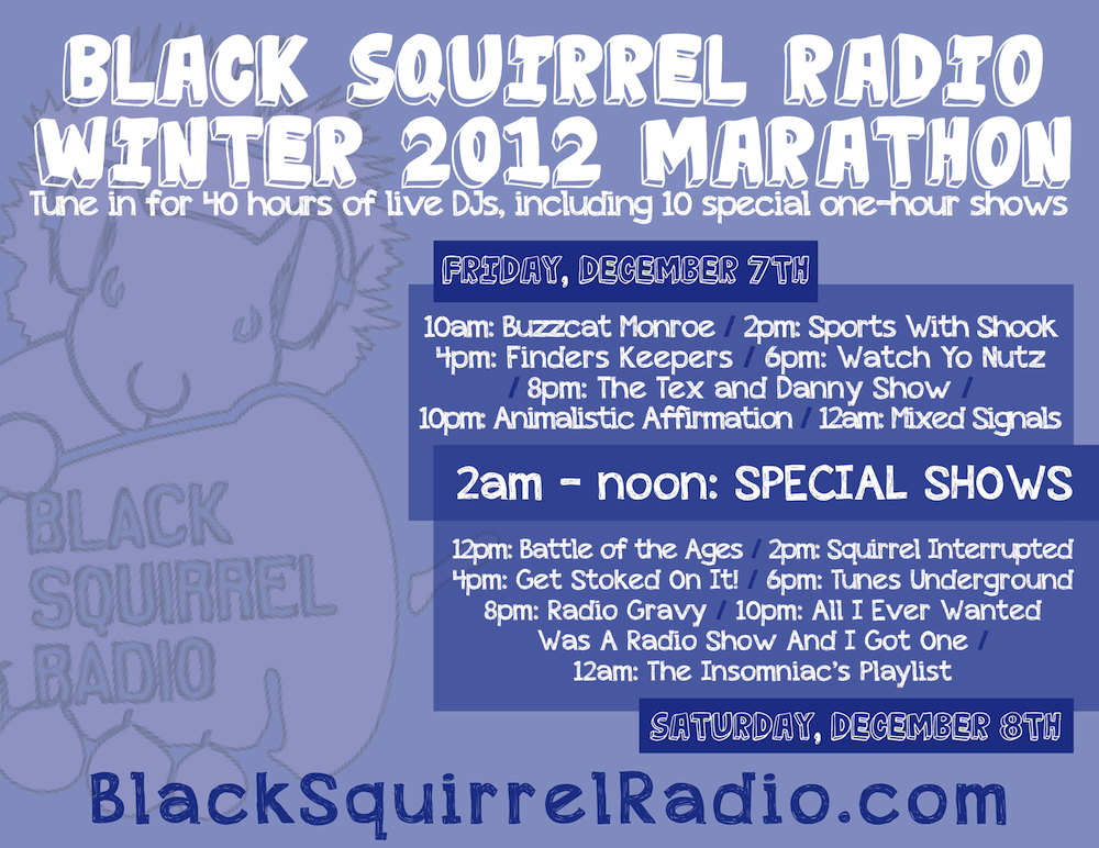 bsrmarathon-winter2012.png