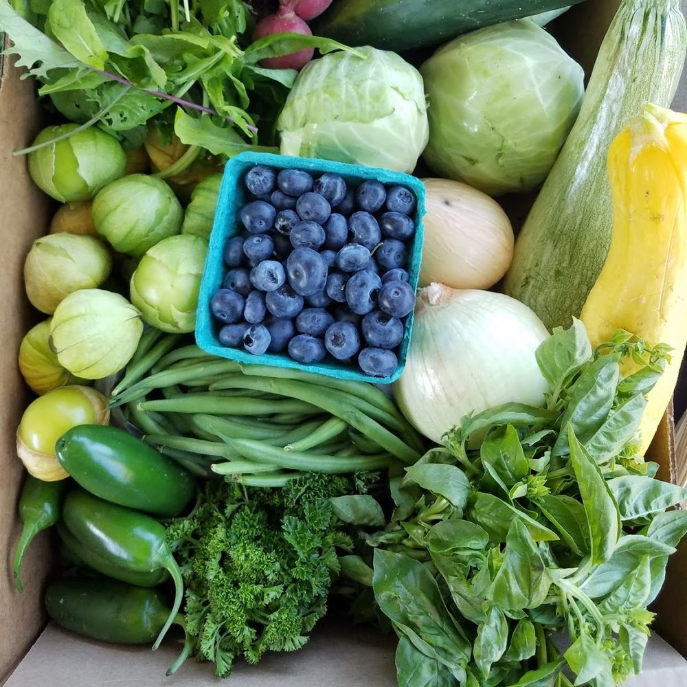 SOUNDBITE - Full harvest share of 7-10 items including veggies, herbs, and fruits with quantities to serve about 3 people. 22-week season with two vacation weeks.
