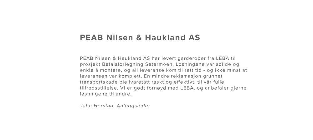 PEAB-Nilsen-&-Haukland-AS.jpg