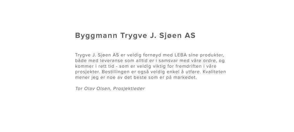 Byggmann-Trygve-J.-Sjøen-AS.jpg