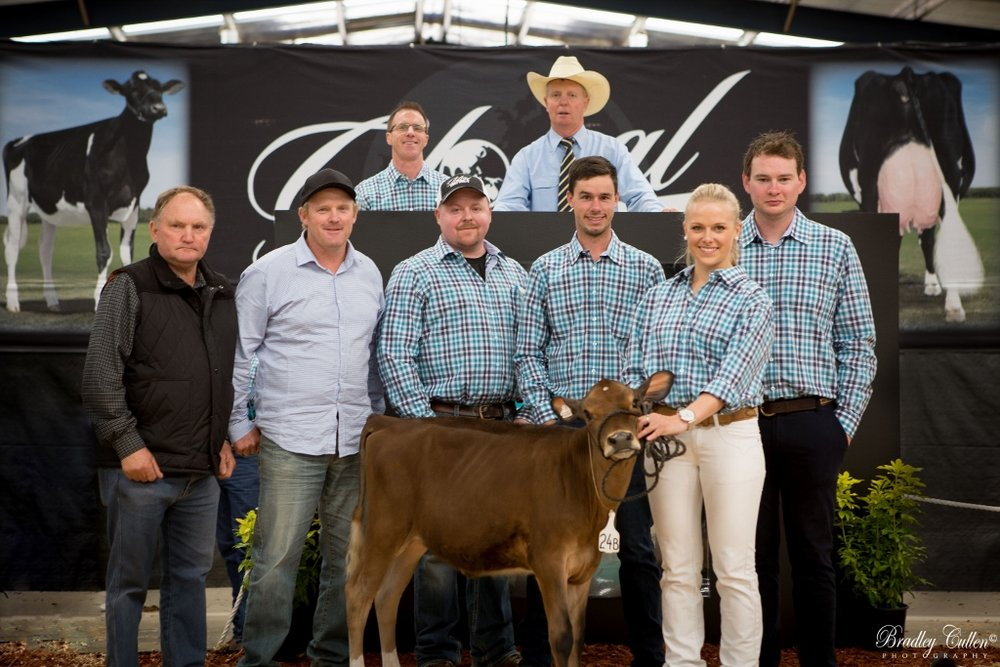 LR Verbatim Karlie 2 broke the Australian record price at the 2015 GIS for $22,000