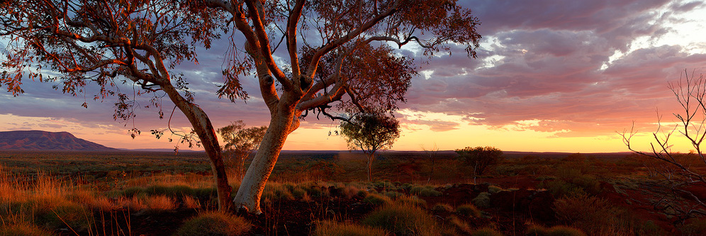 Panoramic Images   Panoramic images