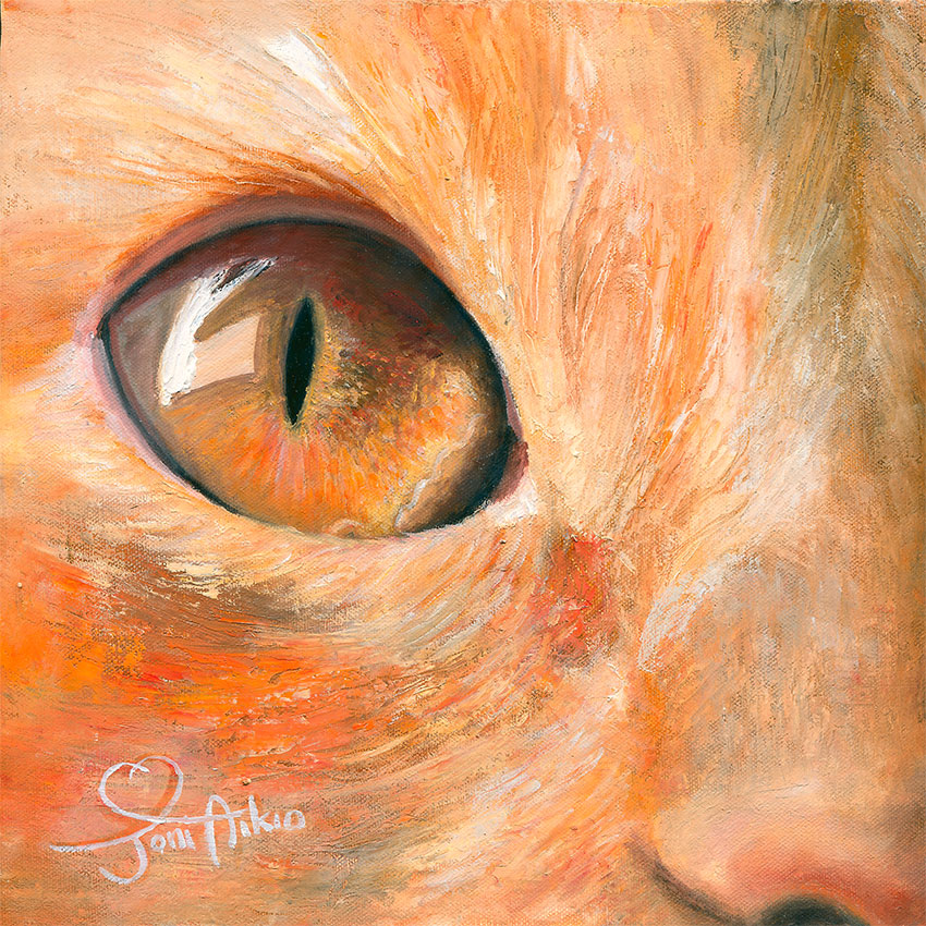 kissan-katse-maalaus-taide-joni-aikio.jpg