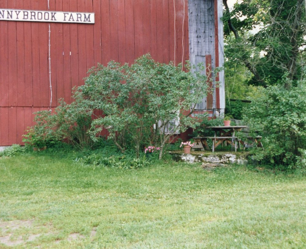 Sunnybrook Farm II.jpg