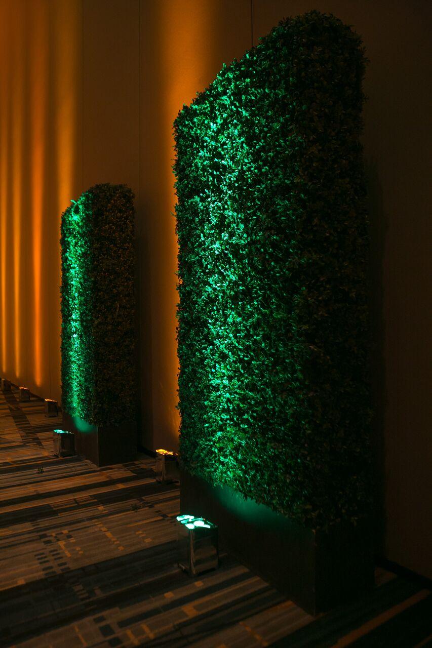 Marina Luri events lighting design