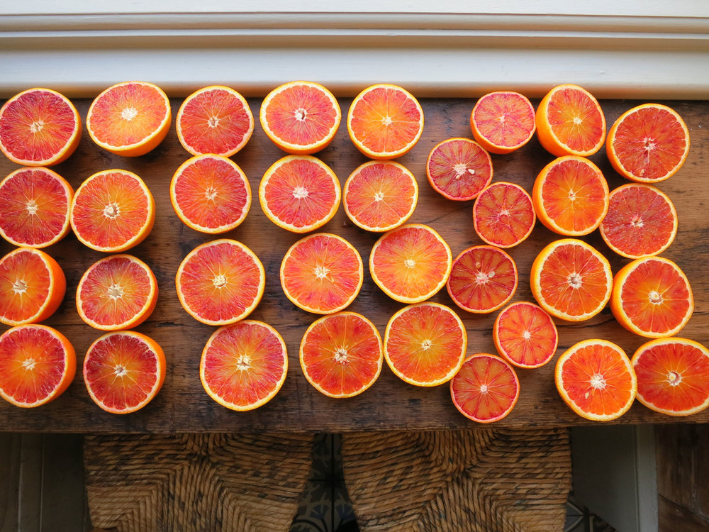 Blood-oranges-feb-2013.jpg