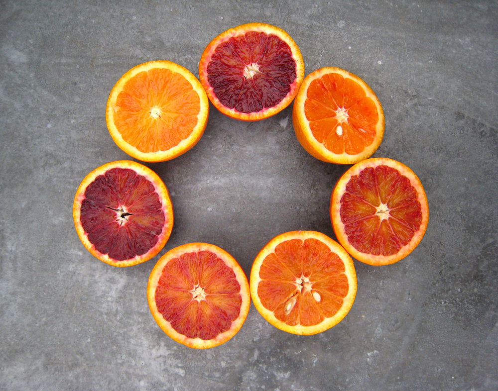 Blood-orange-O.jpg