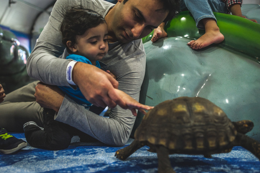 Father helps his one year old son pet a turtle in the birthday party room at the Denver aquarium