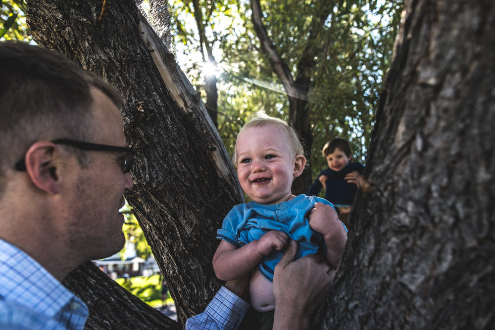 Father putting his baby boy in a tree while his older son is placed in the tree behind him, Washington Park, Denver, CO
