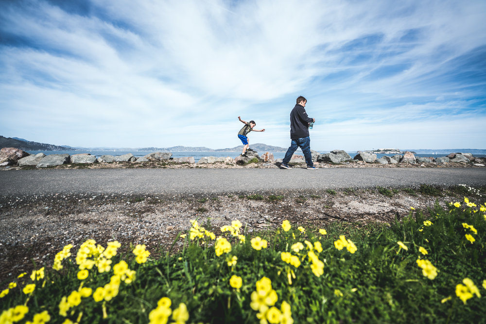 A little boy dances across rocks as his father walks beside him, with yellow flowers in the foreground and the San Francisco bay in the background
