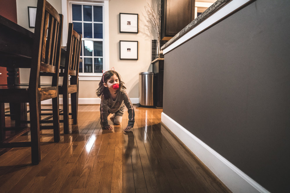 Color photo of a little girl wearing a pink kitty cat ear headband, carrying a red fuzzy ball in her mouth, and crawling on all fours like a cat. Photo taken in her kitchen in Denver, Colorado during her family's in-home photography session.