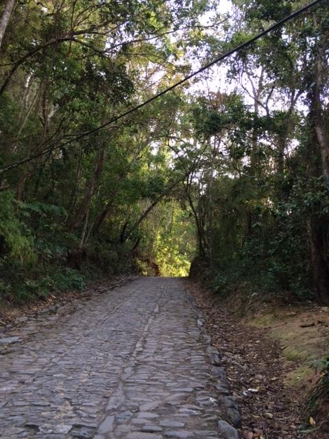 Camino de Galipan