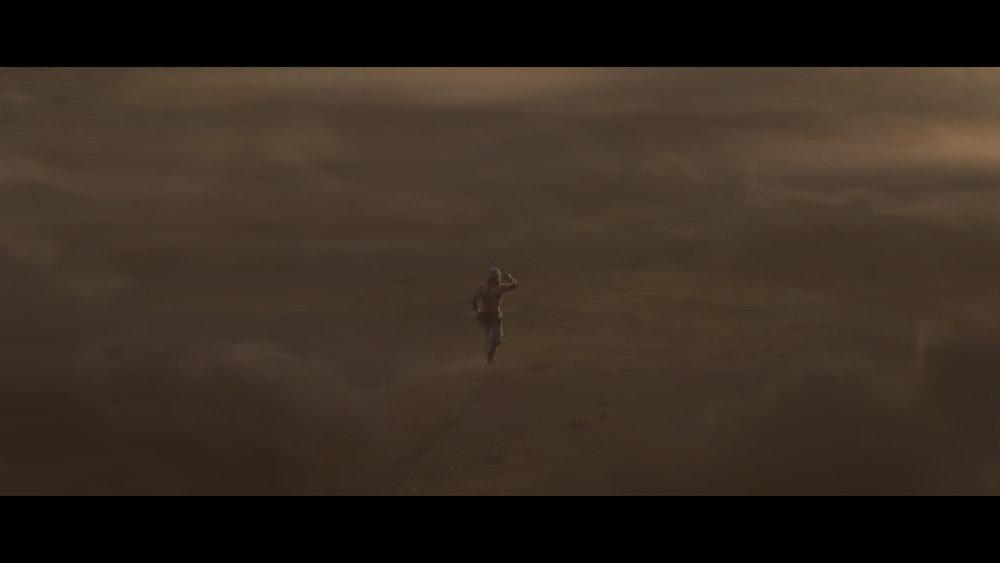 Desert Wanderer