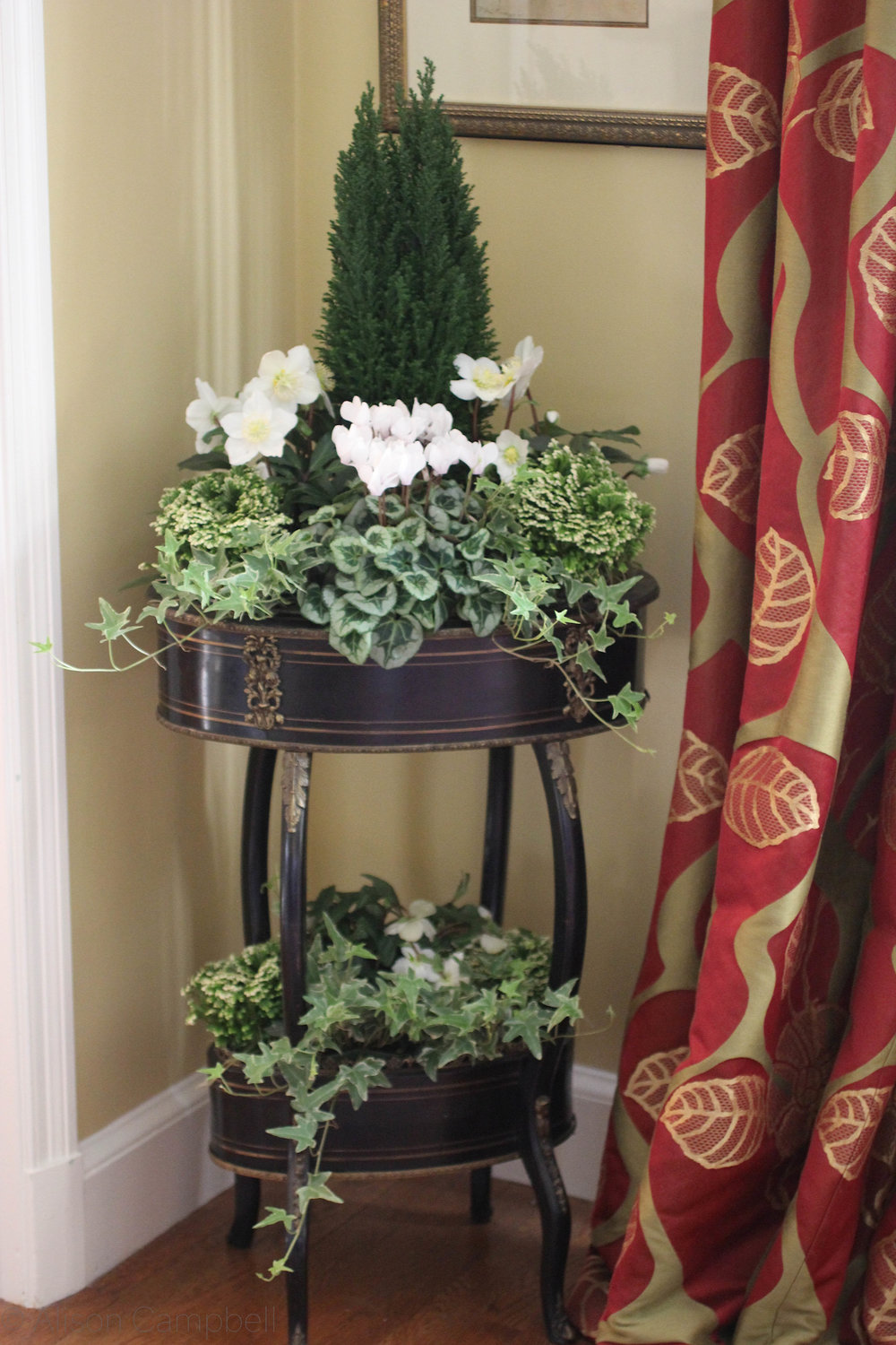 holiday interior planter.jpg