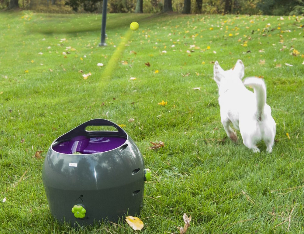 PetSafe-Automatic-Ball-Launcher-03.jpg
