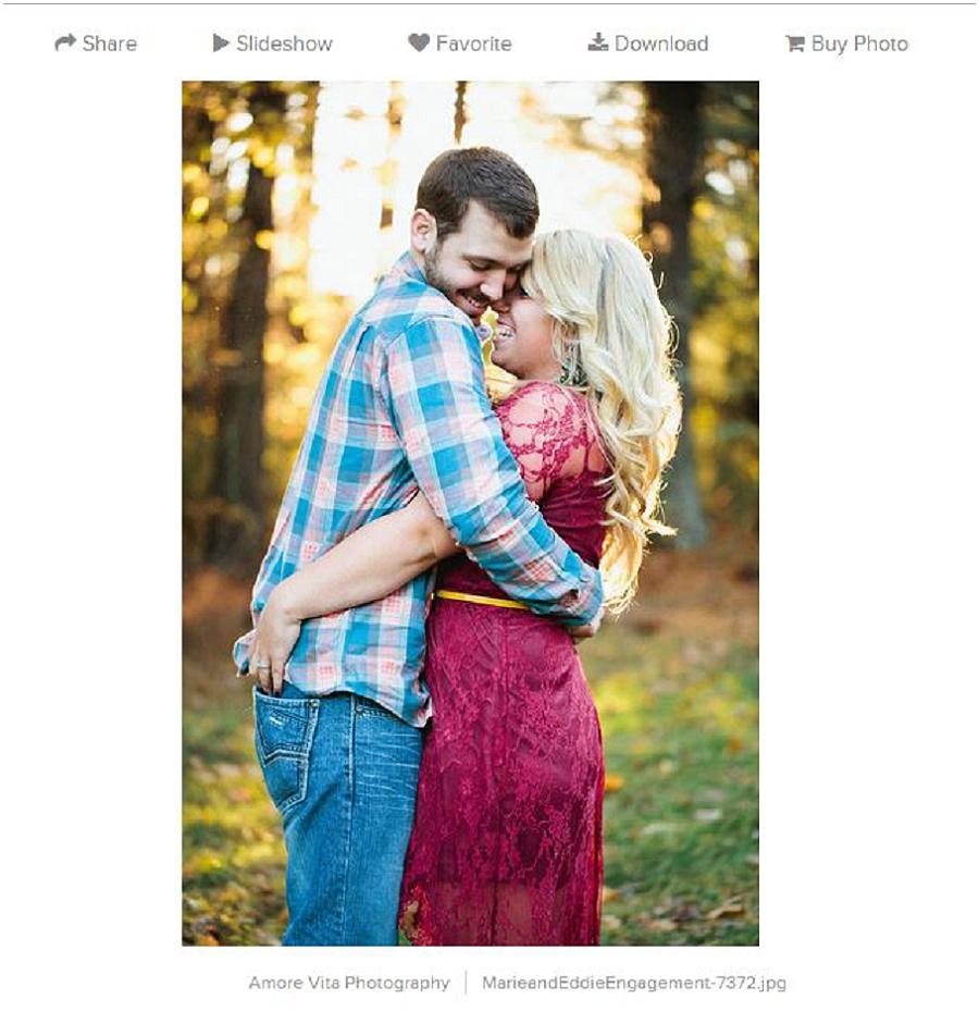 Charlotte Wedding Photographer - Amore Vita Photography_0840