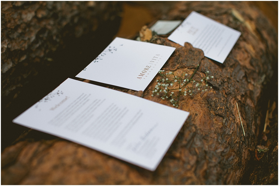 Photographer Welcome Packet - Amore Vita Photography_0009