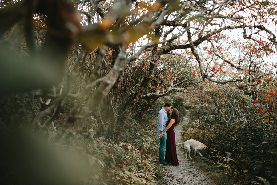 craggy-gardens-engagement-amore-vita-photography_0069