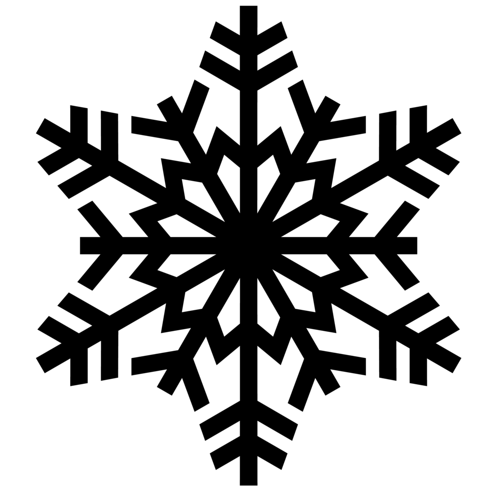 Snowflake_Business 101 image_10.02.2017.png