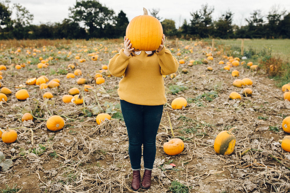 pumpkinpatch-17.jpg