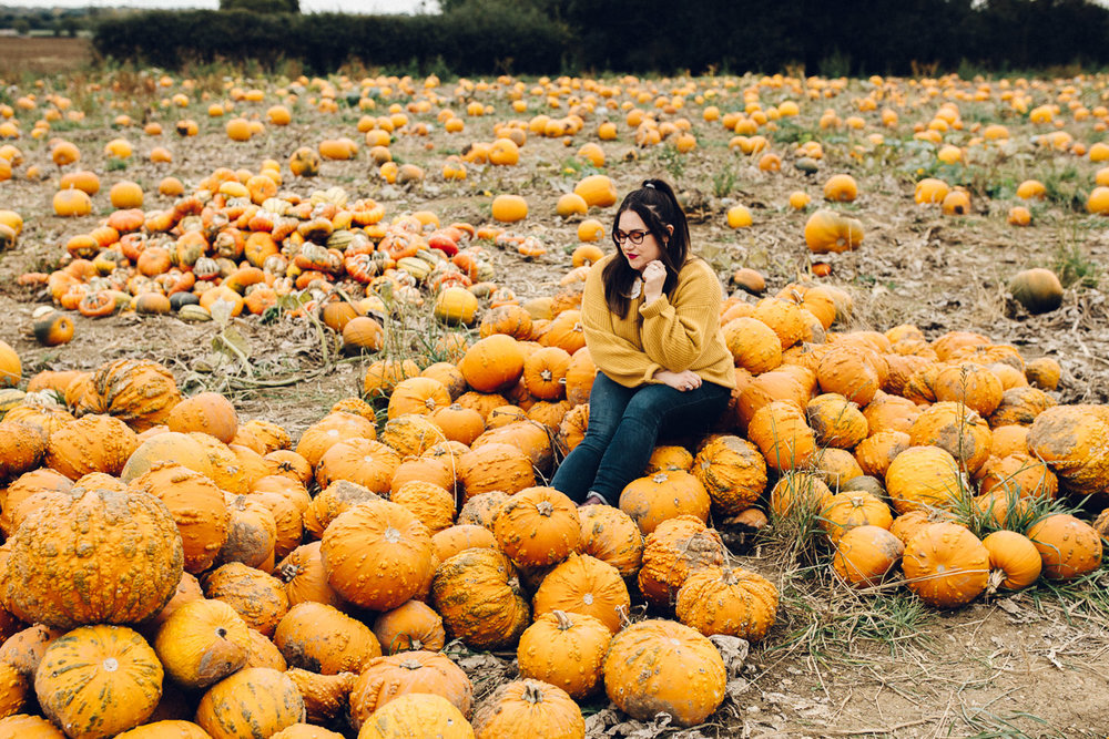 Foxes Farm Produce Pumpkin Patch - Alternative Photographer Essex