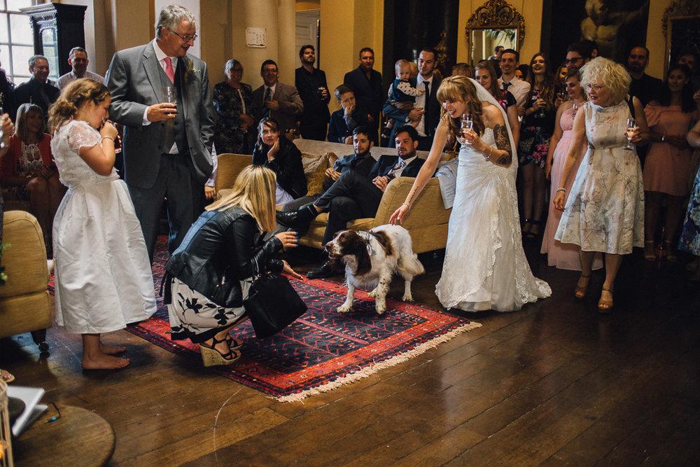 Dog Watches Wedding Speeches inside Kings Weston House Bristol