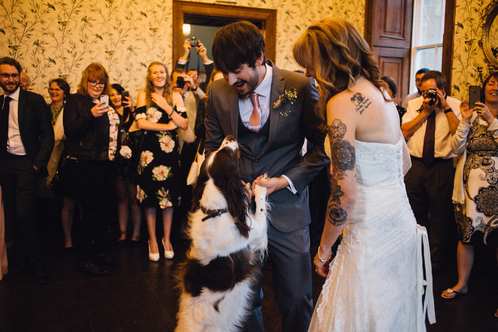 Dog Joins Couple for First Dance