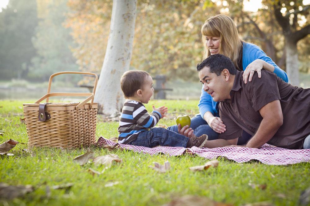 family_picnic.jpg