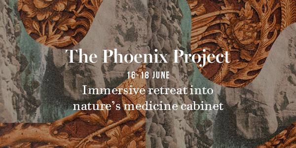 phoenixprojectillustration.jpg