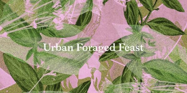 urbanforagedfeast42acresillustration.jpg