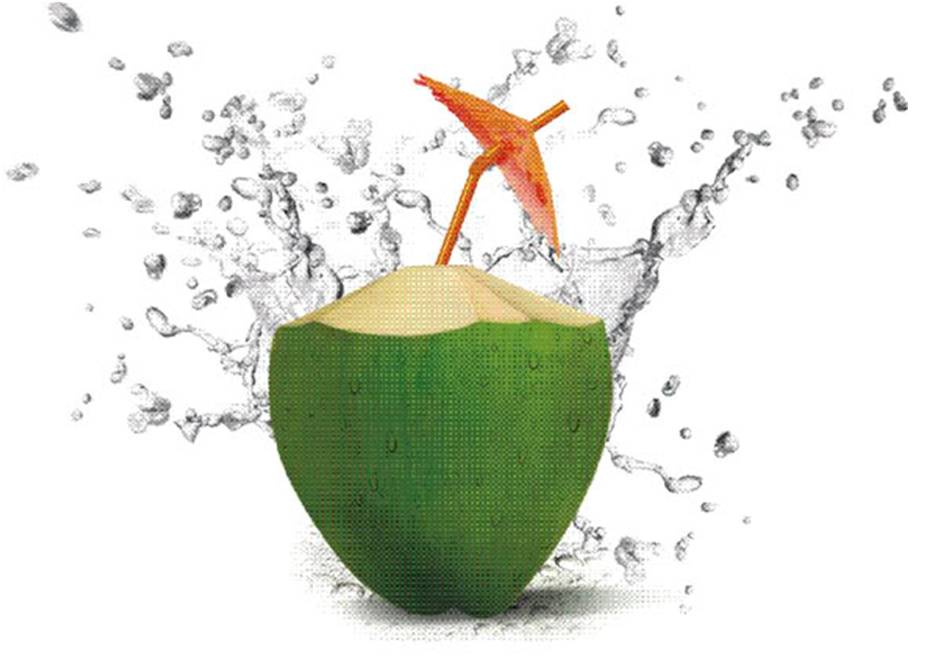 CoconutWater pic 2