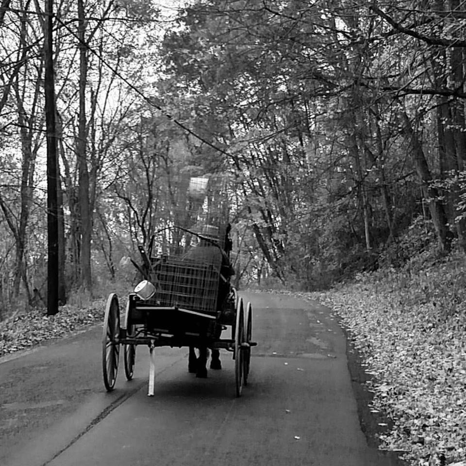 Amish worker headed home... just outside Gnadenhutten