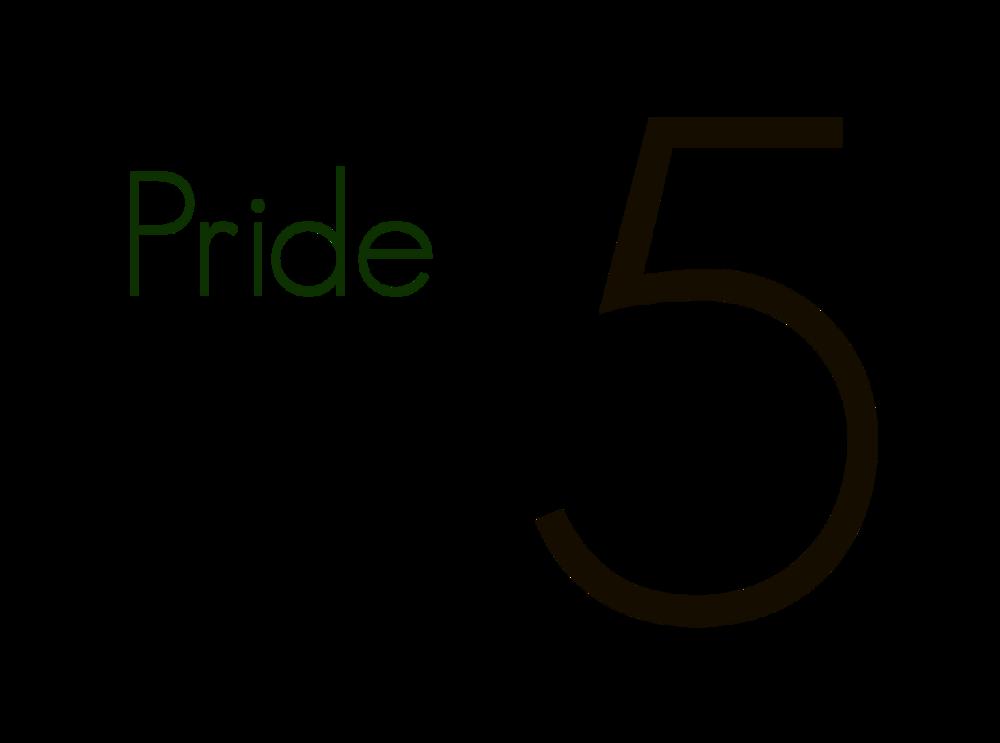 Pride in D5 Logo - Transparent.png