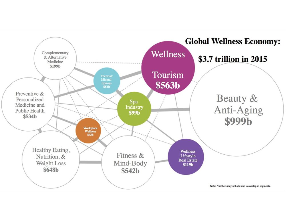 Global Wellness Institute 2016
