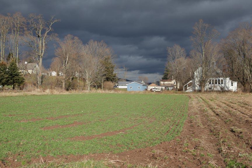 farm-4788.jpg