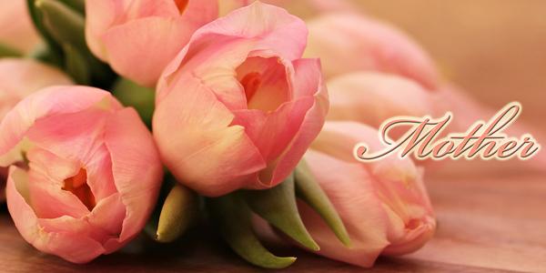 Pink-Rose-Mother-CS-130.jpg