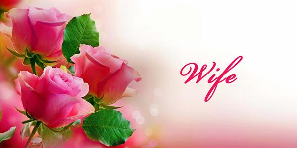 Pink-Roses-Wife-CS-134.jpg